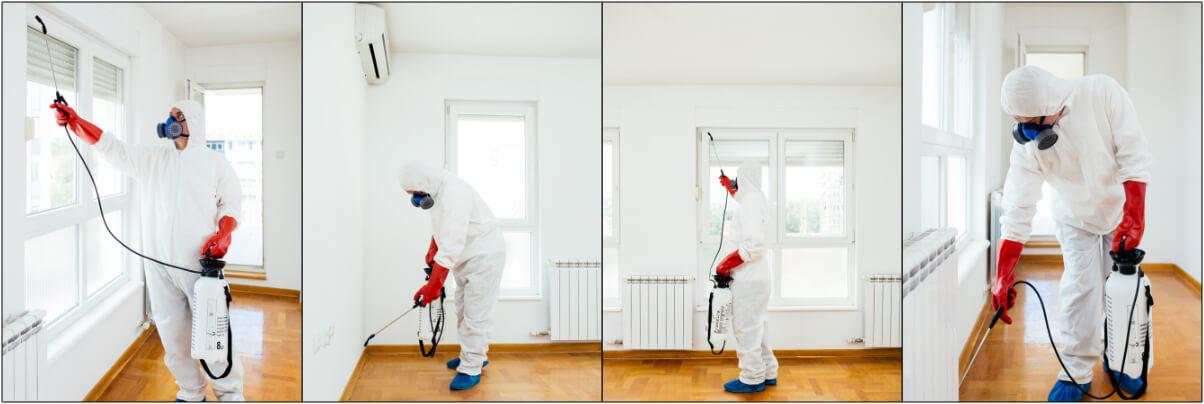 Удаление запаха в помещениях фото