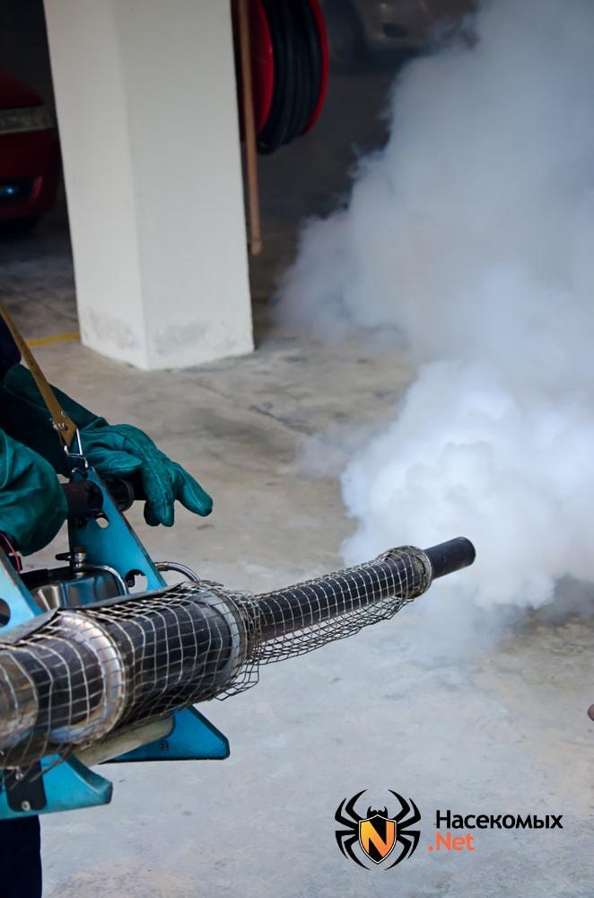 Дератизация газом от крыс