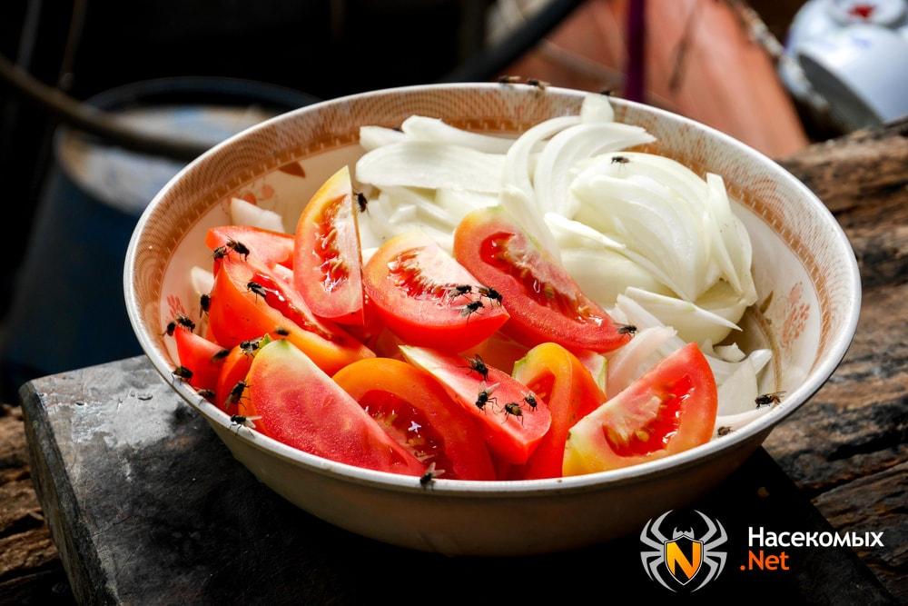 Мухи в салате