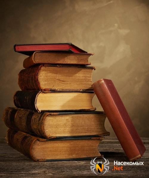 Книжные вши